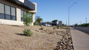 Öken som landskap i Phoenix, AZ Arkivfoto