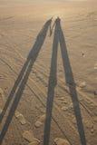 öken tillsammans Arkivfoto