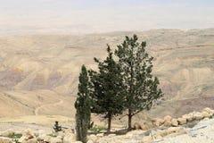 Ökenberglandskap (den flyg- sikten), Jordanien, Mellanösten Arkivbilder