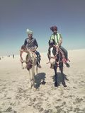 ökenegypt sahara västra white Royaltyfri Bild