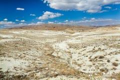 Ökenlandskap Arkivfoto