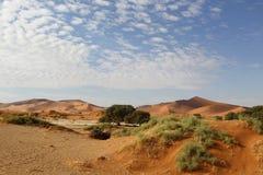 Ökenlandskap, Sossusvlei, Namibia fotografering för bildbyråer