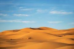 Ökenlandskapmerzouga Marocko petersburg för lampa för kustaftonfinland golf st Guld- sanddyn Royaltyfri Fotografi