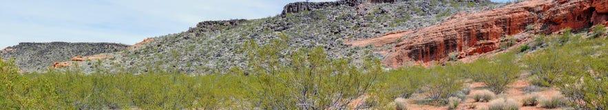 Ökenpanoramautsikter från att fotvandra skuggar runt om St George Utah runt om Beck Hill, Chuckwalla, sköldpaddaväggen, paradiska Royaltyfria Foton