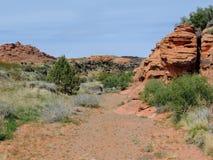 Ökenpanoramautsikter från att fotvandra skuggar runt om St George Utah runt om Beck Hill, Chuckwalla, sköldpaddaväggen, paradiska Arkivfoto