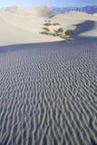 Ökensand, Death Valley, Kalifornien Royaltyfri Foto