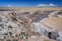 Ökensikt av Arizona USA Arkivfoto