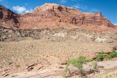 Ökensikt av centrala Utah Arkivfoto