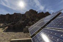 Ökensol och solsystem på den nationella sylten för Mojave royaltyfri bild