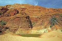 Ökenvattenhålet under rött vaggar klippor Arkivfoto