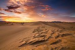 Öknar och landskap för sanddyn på soluppgång arkivfoton