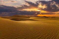 Öknar och landskap för sanddyn på soluppgång royaltyfri foto