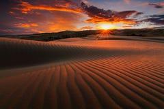 Öknar och landskap för sanddyn på soluppgång arkivbild