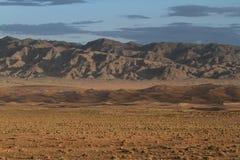 Öknen Gobi royaltyfria foton