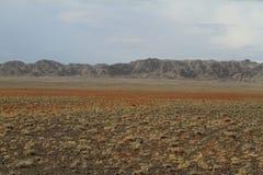 Öknen Gobi arkivfoton