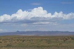 Öknen Gobi royaltyfri bild
