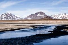 Öknen och berget över blå himmel och vit fördunklar på Altiplano, Bolivia Arkivfoto