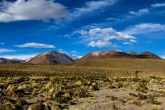 Öknen och berget över blå himmel och vit fördunklar på Altiplano, Bolivia Arkivbild