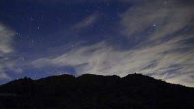 Öknen på natten stock video