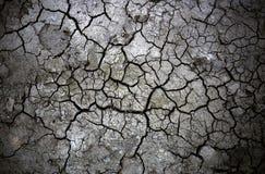 öknen smutsar Arkivfoton