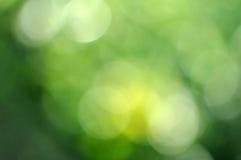 Ökologie bokeh Hintergrund stockbilder