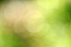 Ökologie bokeh Hintergrund lizenzfreie stockbilder