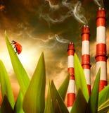 Ökologie in der Gefahr Lizenzfreies Stockfoto