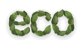 Ökologie lagel Grünblatt, eco Designlogo Aufkleber-Betriebsaufkleber der Natur organischer Stockfoto