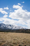 Ökologie-Park-Tempel-Schlucht-Canon-Stadt Colorado Lizenzfreie Stockfotografie