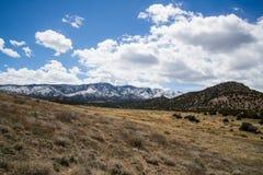 Ökologie-Park-Tempel-Schlucht-Canon-Stadt Colorado Stockfoto