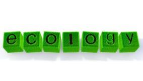 Ökologiebild Stockfoto