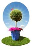 Ökologiekarte lizenzfreie stockbilder