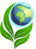 Ökologienatur Lizenzfreies Stockbild