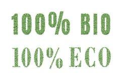 Ökologienaturdesign Lizenzfreies Stockbild