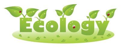 Ökologietextuntertitel mit Marienkäfer- und Grünblättern Stockfoto