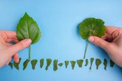 Ökologisch freundliches und nachhaltiges Umweltkonzept Betriebsbäume lizenzfreies stockbild