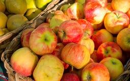 Ökologische Äpfel Stockfoto