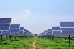 Ökologische Macht des Sonnenkollektors Stockfotografie