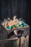 Ökologische Ostereier mit Heu und Federn Stockfoto