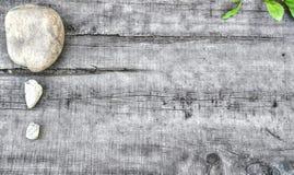 Ökologischer Hintergrund stockfotos