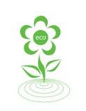 Ökologisches Firmenzeichen Stockbilder