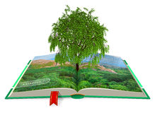 Ökologisches Konzept Stockfotos