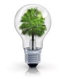 Ökologisches Konzept Stockfoto