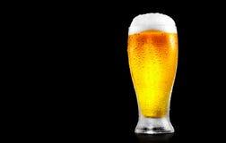 Öl Exponeringsglas av kallt öl med vattendroppar royaltyfri fotografi