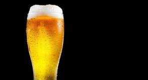 Öl Exponeringsglas av kallt öl med vattendroppar Hantverköl royaltyfri fotografi