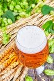 Öl i exponeringsglas Arkivfoton