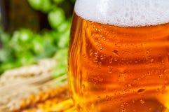 Öl i exponeringsglas Arkivbild