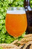 Öl i exponeringsglas Fotografering för Bildbyråer