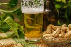 Öl i flaska och exponeringsglas och jordnötter i kristallbunke royaltyfri foto