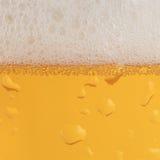 Öl med fradga arkivbilder